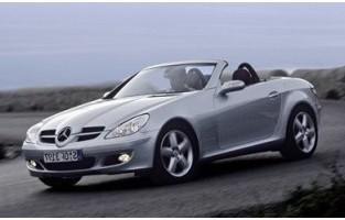 Mercedes SLK R171 (2004 - 2011) economical car mats