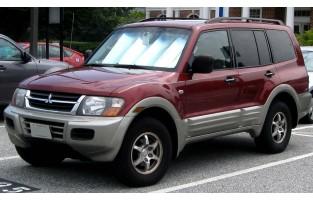 Mitsubishi Pajero / Montero (2000 - 2006) economical car mats
