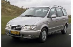 Hyundai Trajet economical car mats